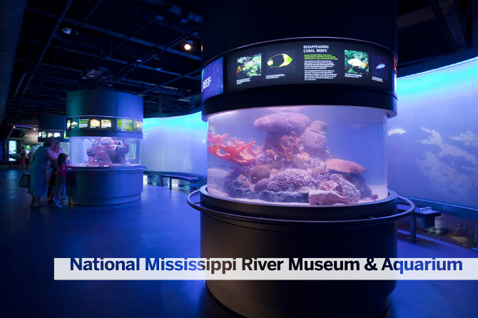 National Mississippi River Museum and Aquarium - The ...